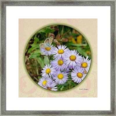 Purplish Copper On Wild Asters Framed Print