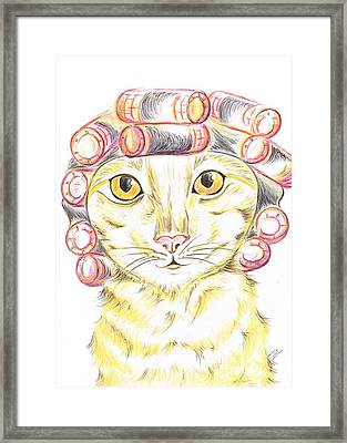 Purrfect   Pampering  Framed Print