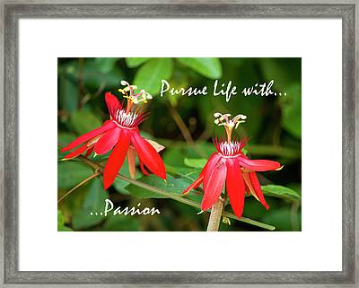 Pursue Life With Passion 2 Framed Print