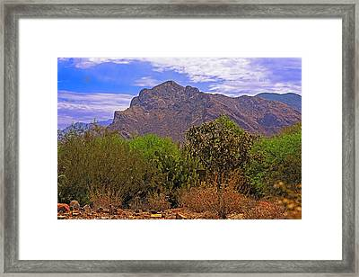 Framed Print featuring the photograph Pusch Ridge Morning H10 by Mark Myhaver