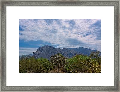 Framed Print featuring the photograph Pusch Ridge Morning H26 by Mark Myhaver