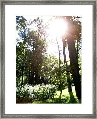 Framed Print featuring the photograph Pushkin Afternoon by Robert D McBain
