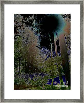 Framed Print featuring the photograph Pushkin Treescape by Robert D McBain