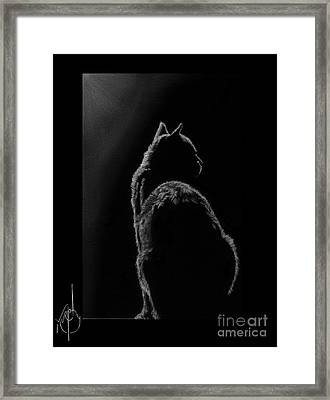 Pussy Cat Framed Print by Murphy Elliott