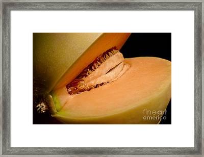Pussy Fruit Framed Print by Rodrigo Fujiwara