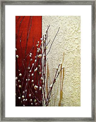 Pussy Willow Corner Framed Print by Joan  Minchak