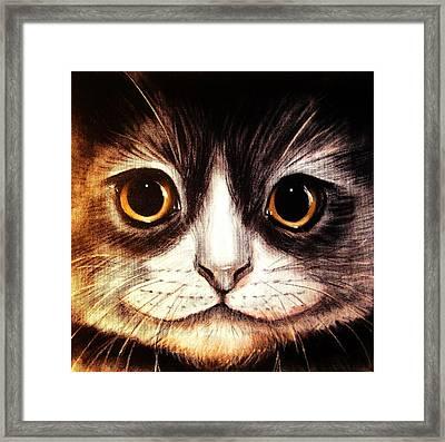 Pussycat Framed Print by Anastasis  Anastasi