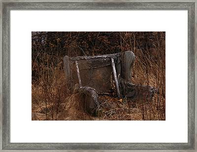 Putting Down Roots Framed Print