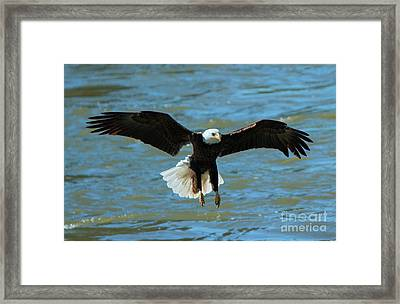 Putting On The Brakes Framed Print by Mike Dawson