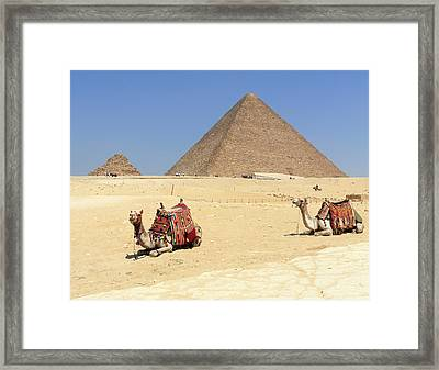 Framed Print featuring the photograph Pyramids Of Giza by Silvia Bruno