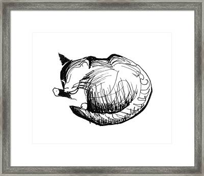Framed Print featuring the drawing Pywackit by Keith A Link