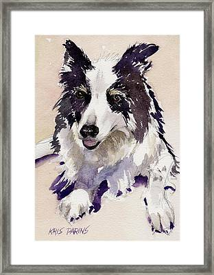 Jack Framed Print by Kris Parins