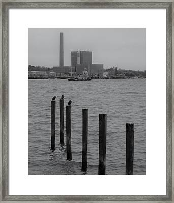 Q. River Framed Print