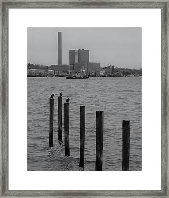 Q. River Framed Print by John Scates