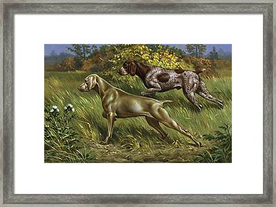 Qc By Cwl Framed Print by National Geographic