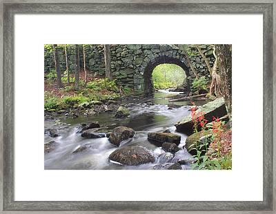 Quabbin Reservoir Keystone Bridge And Cardinal Flowers Framed Print by John Burk