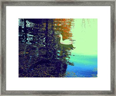 Quack Framed Print
