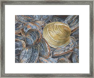 Quahog On Clams Framed Print