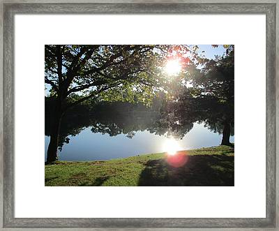 Quail Pond Framed Print by John Adams