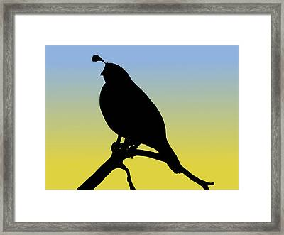 Quail Silhouette At Sunrise Framed Print