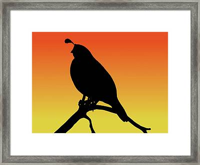 Quail Silhouette At Sunset Framed Print