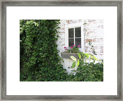 Quaint Cottage At The Farm Framed Print by Janis Beauchamp