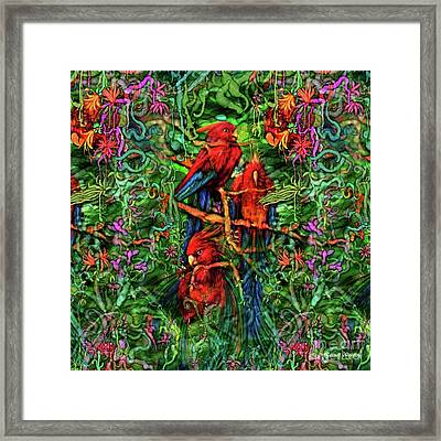 Qualia's Parrots Framed Print by Russell Kightley