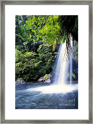 Quebrada Juan Diego Waterfall Framed Print by Thomas R Fletcher