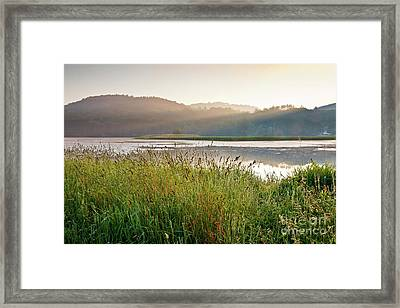 Quechee Sunrise Framed Print by Susan Cole Kelly