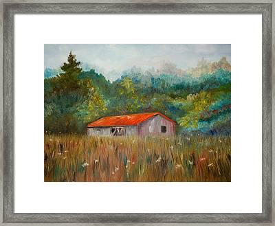 Queen Anne Lace Farm Framed Print by Phil Burton