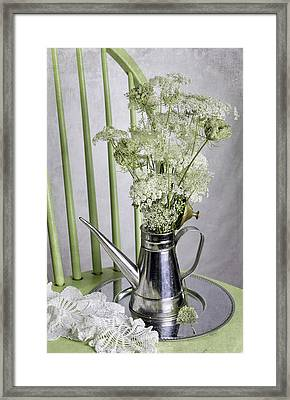 Queen Anne's Lace Framed Print by Betty Denise