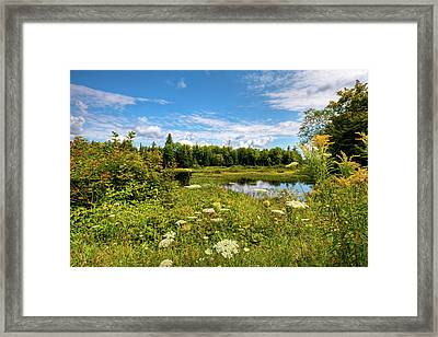 Framed Print featuring the photograph Queen Anne's Lace On The Moose River by David Patterson