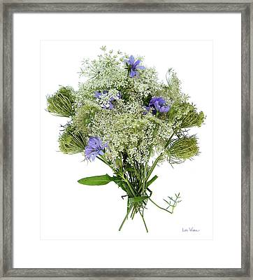 Queen Anne's Lace With Purple Flowers Framed Print by Lise Winne