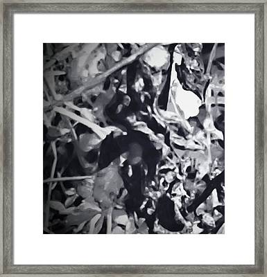 Queen Of Throne Framed Print