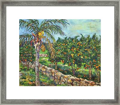 Queen Palm And Oranges Framed Print by Lily Hymen