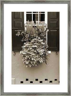 Queen Street Flowers Charleston Sc Framed Print