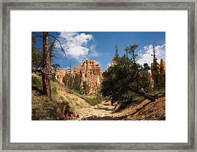 Queens Garden Trial Framed Print by James Marvin Phelps