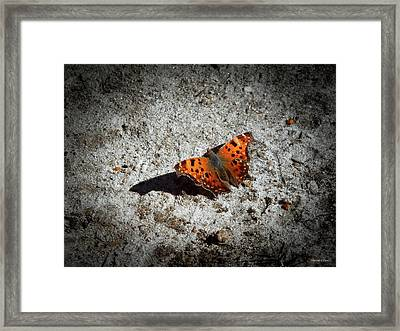 Question Mark Framed Print