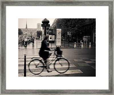 Quick Glimpse Framed Print