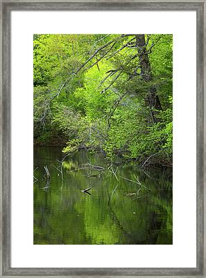 Quiet And Still Framed Print by Karol Livote