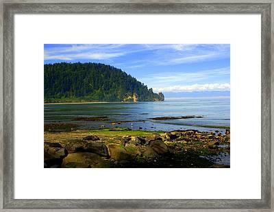 Quiet Bay Framed Print by Marty Koch