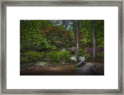 Quiet Beauty Framed Print by Marvin Spates