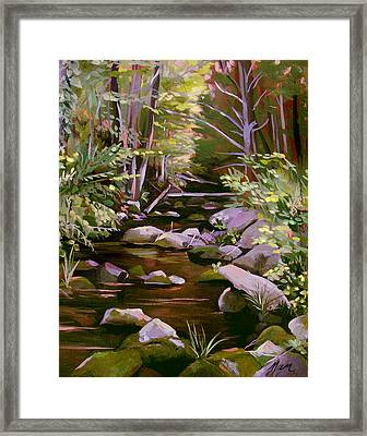 Quiet Brook Framed Print