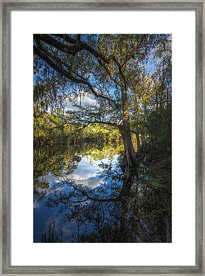 Quiet Embrace Framed Print