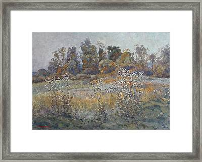 Quiet Evening Framed Print by Andrey Soldatenko