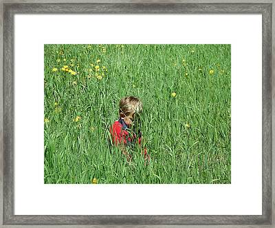 Quiet Fields Framed Print by Peter  McIntosh