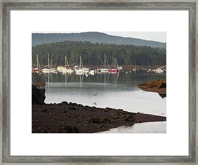 Quiet Harbor, Bar Harbor, Maine Framed Print