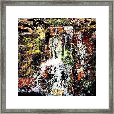 Quiet Little Fall Framed Print by Mia Mendez