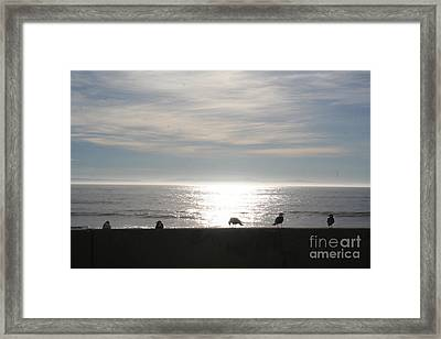 Quiet Moment Framed Print by Don Robson