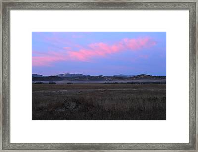 Quiet Morning Framed Print by Nep Toon